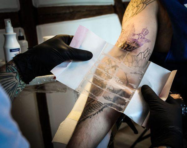 Невероятно, но сукровица – ускоряет заживление татуировки до 2 раз!